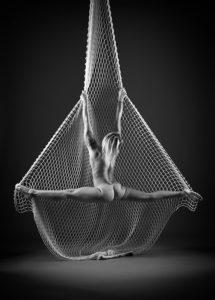 Arial net